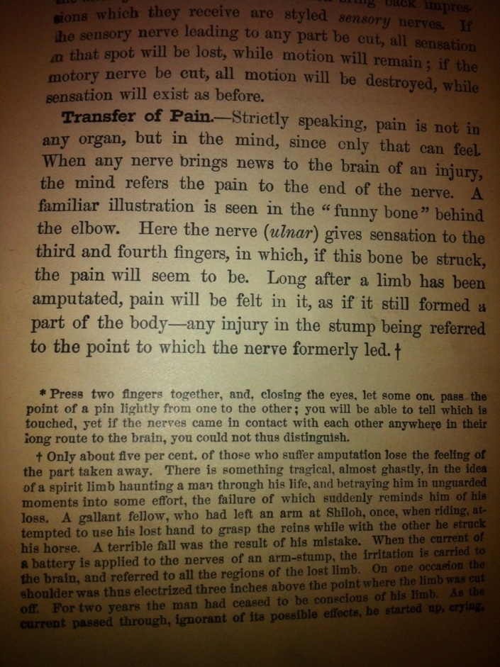 From the 1872 textbook Human Physiology by J. Dorman Steele, PhD.